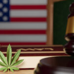 Licensing & Managing Cannabis Programs: A New Challenge for State and Local Governments
